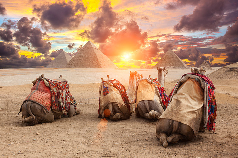 17 Day South Africa and Egypt Tour with Flights
